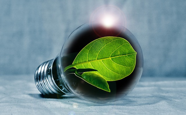 Spotřebu elektrické energie můžeme zásadně ovlivnit